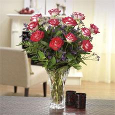 Beautiful Bicolor Dozen Roses