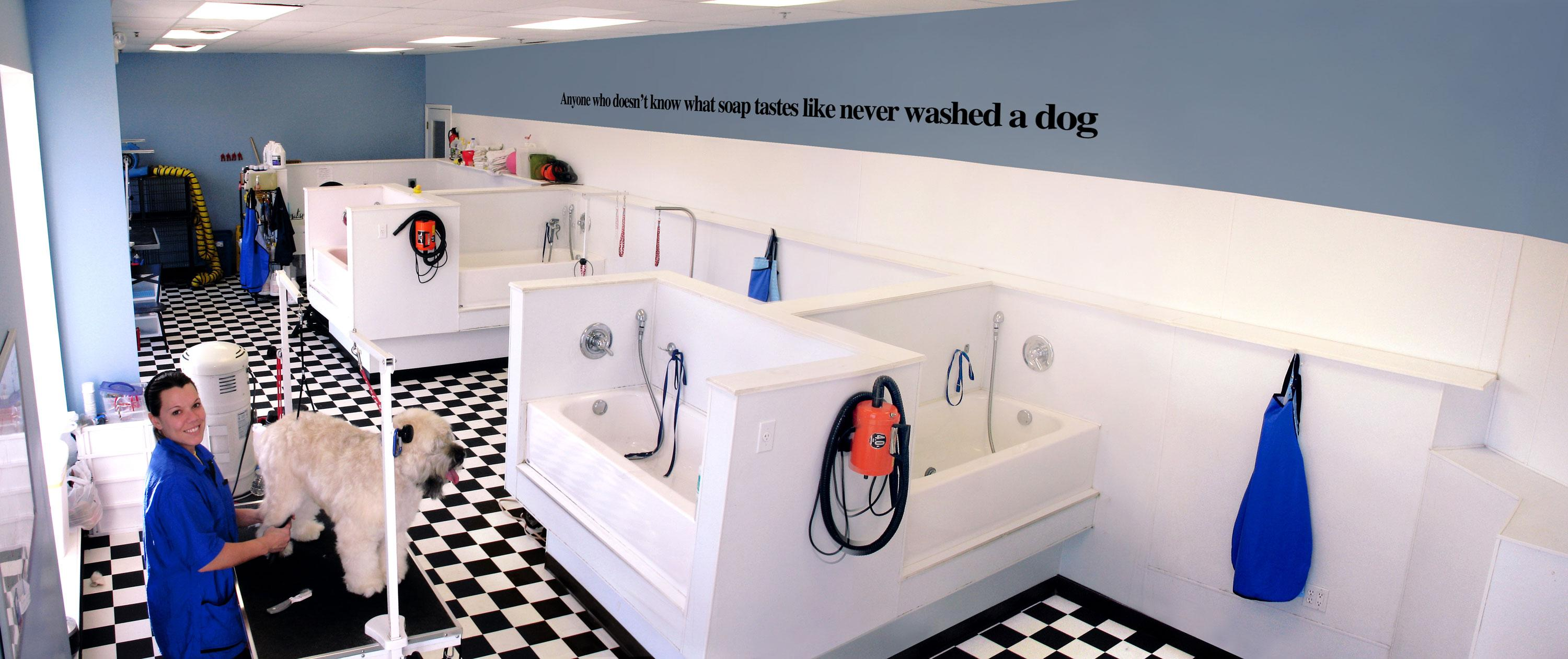 Grooming and Dog Wash