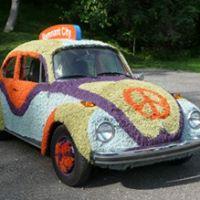 The Pittsburgh Rug Bug ...