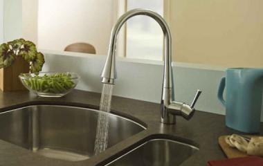 Pekoe Pull Down Faucet Valu Rooter Has It!