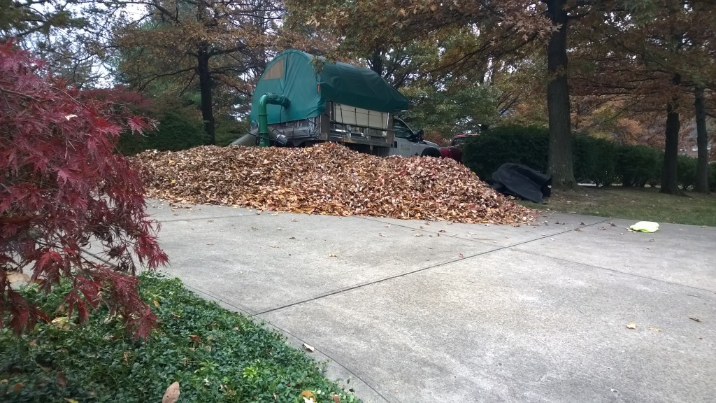 Leaf Removal Pittsburgh