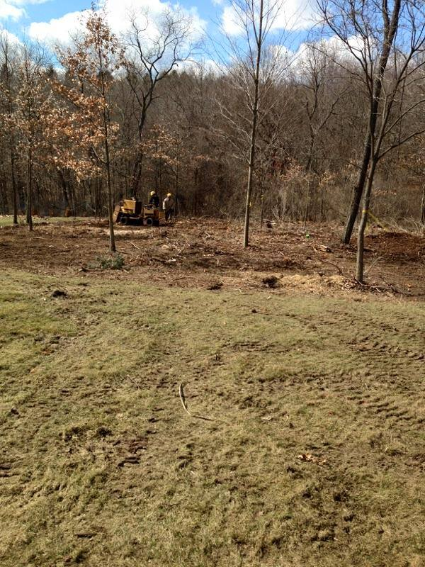 Mulching North Hills