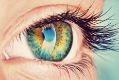 Eye Doctor Cranberry