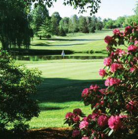 Golfing Mercer County