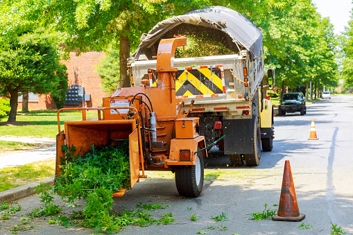 Commercial Tree Removal Pittsburgh